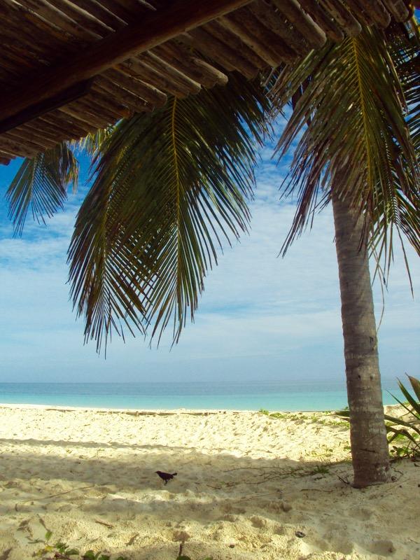 insula Cayo Levisa Cuba 16