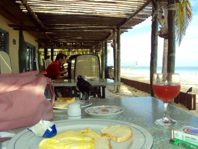 insula Cayo Levisa Cuba 17 mic dejun