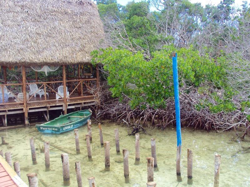 insula Cayo Levisa Cuba 5