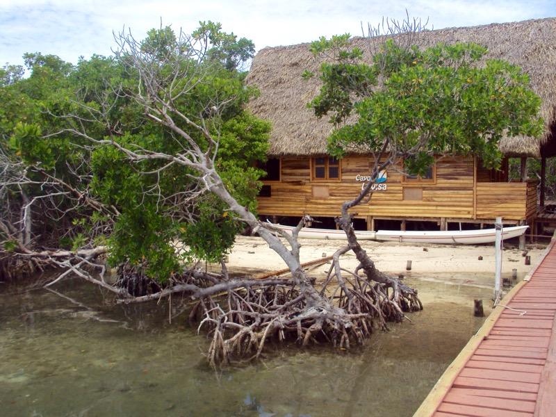 insula Cayo Levisa Cuba 4