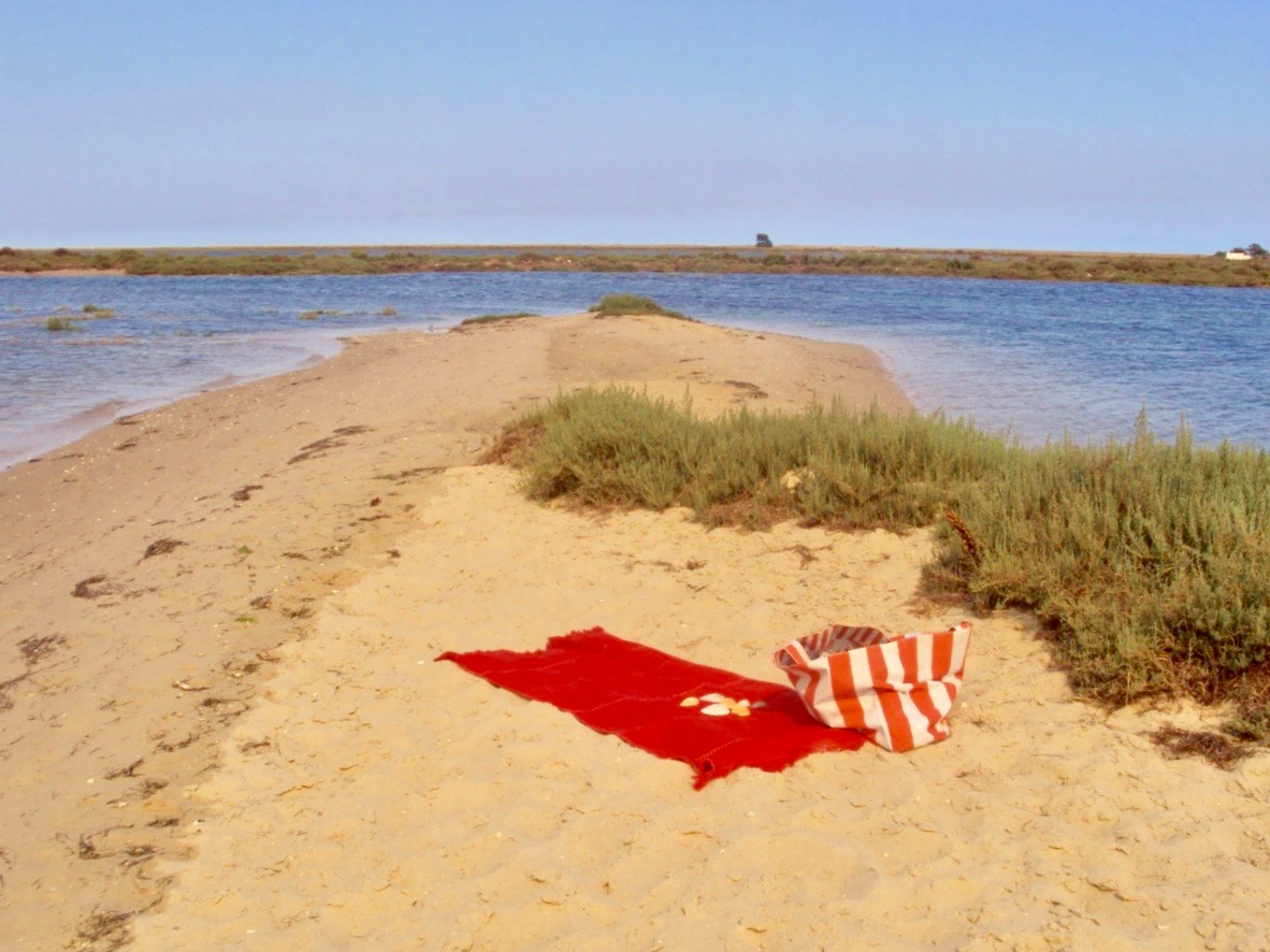 insulele Armona Culatra Farol Algarve 23