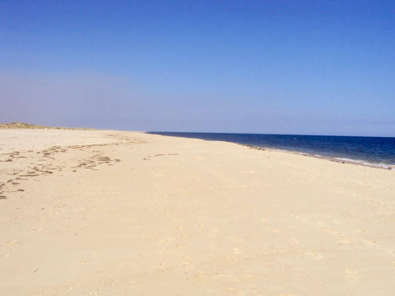 insulele Armona Culatra Farol Algarve plaja 9