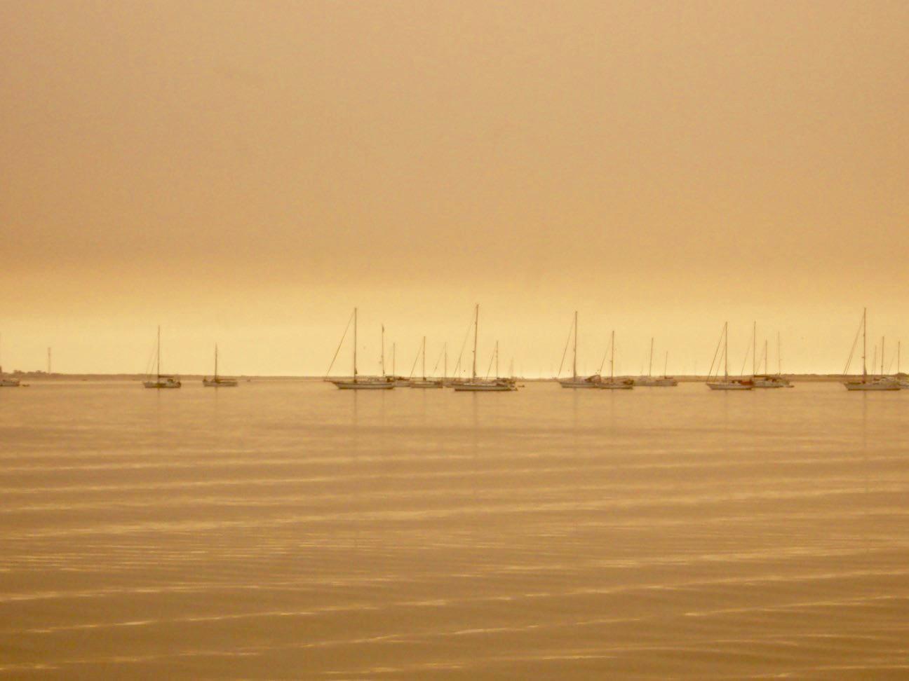 insulele Armona Culatra Farol Algarve 28