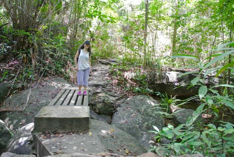 Junglă şi plajă în Parcul Naţional din Insula Penang 19