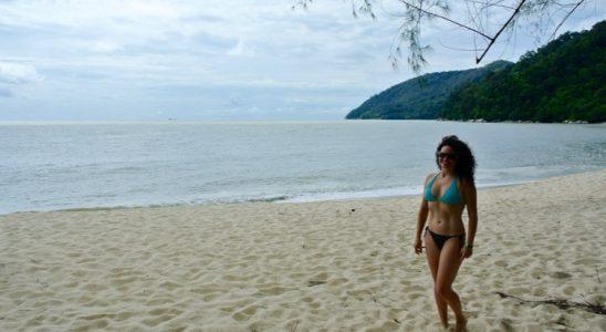 Junglă şi plajă în Parcul Naţional din Insula Penang 8