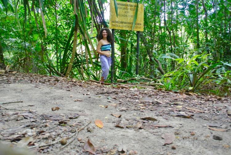 Junglă şi plajă în Parcul Naţional din Insula Penang 7