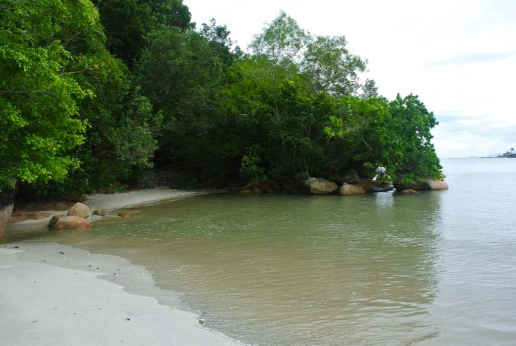 Junglă şi plajă în Parcul Naţional din Insula Penang 33