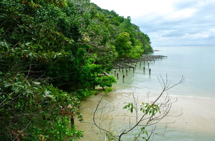 Junglă şi plajă în Parcul Naţional din Insula Penang 30