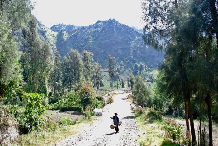Catarat fara ghizi pe un vulcan din Indonezia Muntele Bromo1 1