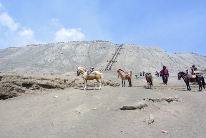 Muntele Bromo Indonezia Excursie 5