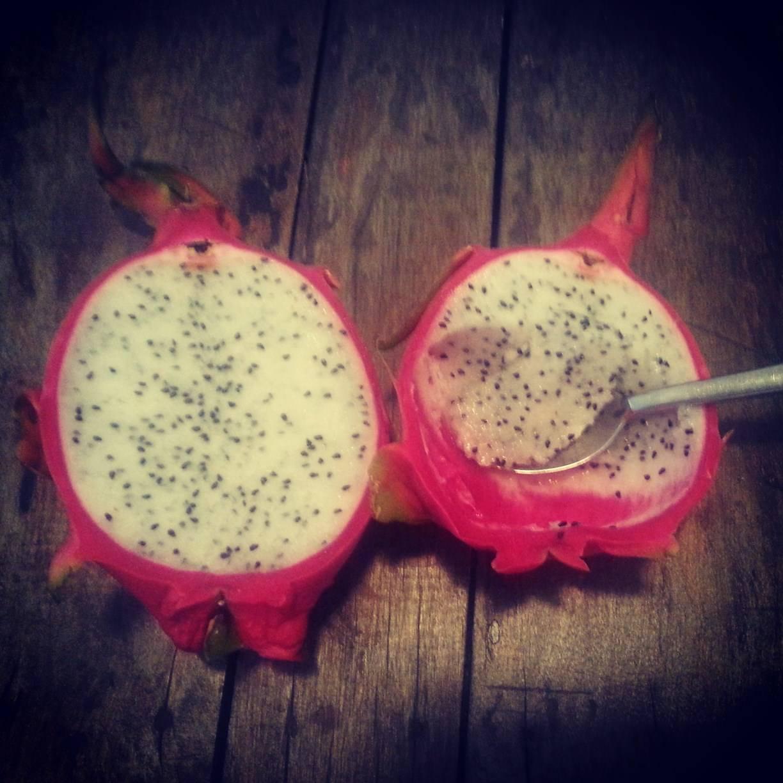Pitaya fructul dragonului 6