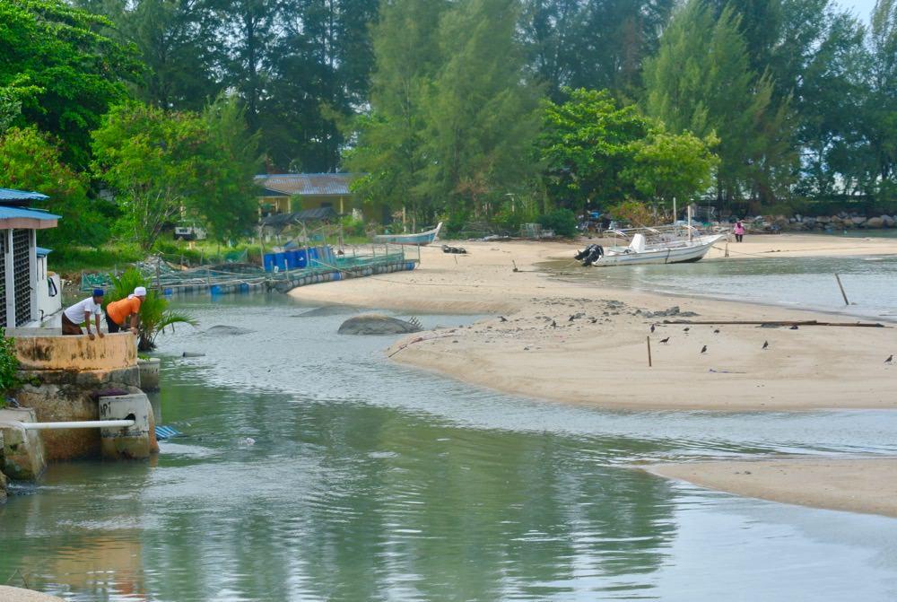 Sat tsunami, insula Penang