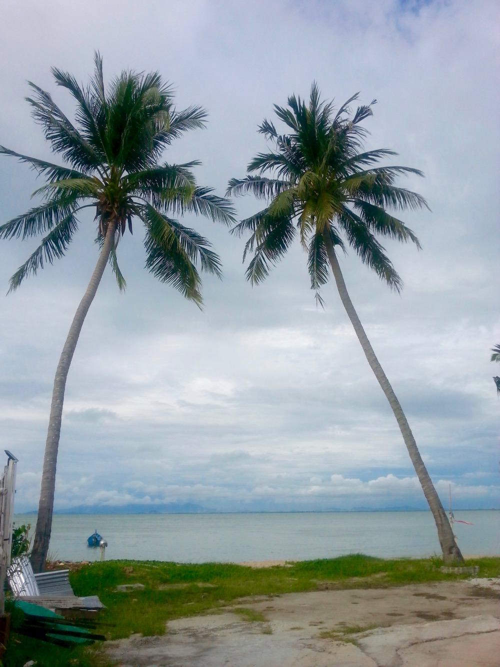 Insula Penang singura