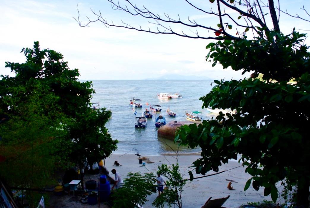 insula penang malaezia cosmopolita obiective