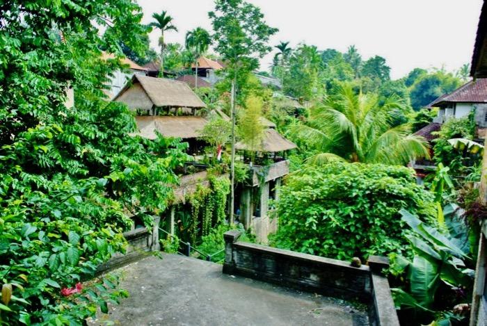 7 lucruri de facut in Ubud Bal: restaurante verzi