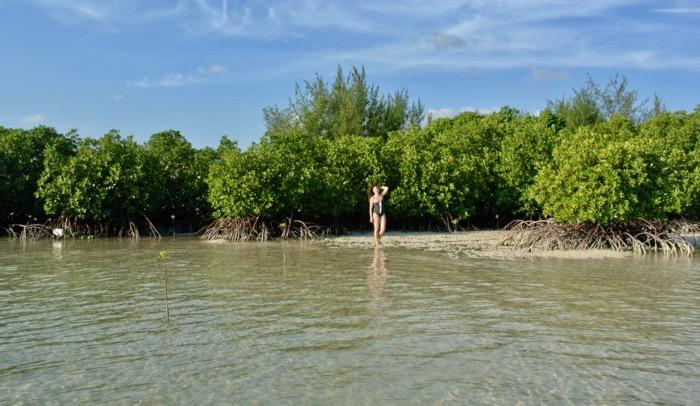 Plimbare prin padurea de mangrove din Karimunjawa Indonezia3 5