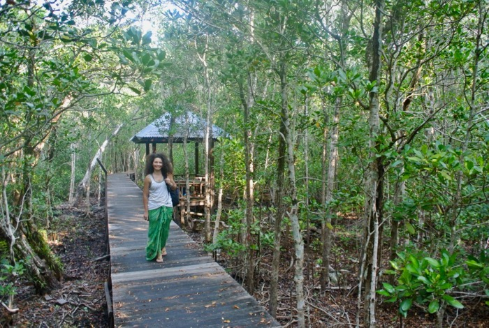 Plimbare prin padurea de mangrove din Karimunjawa Indonezia3 1