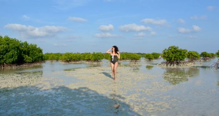 Plimbare prin padurea de mangrove din Karimunjawa Indonezia3 8