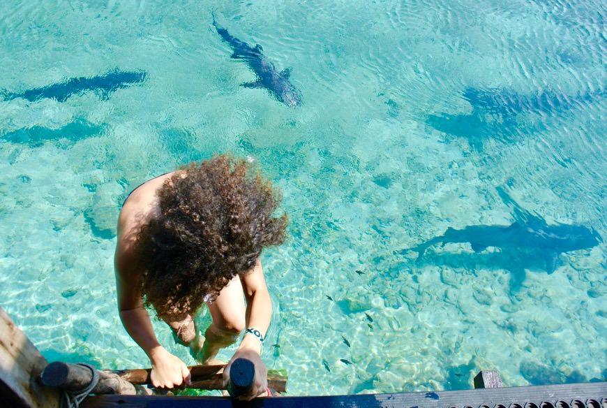 baie intr-o piscina naturala cu rechini 9