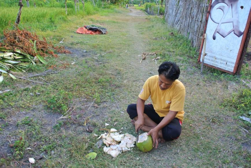 Apa de cocos asia (12)