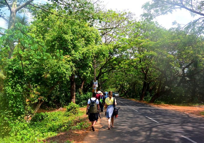 1 Kerala viata la sat (2)