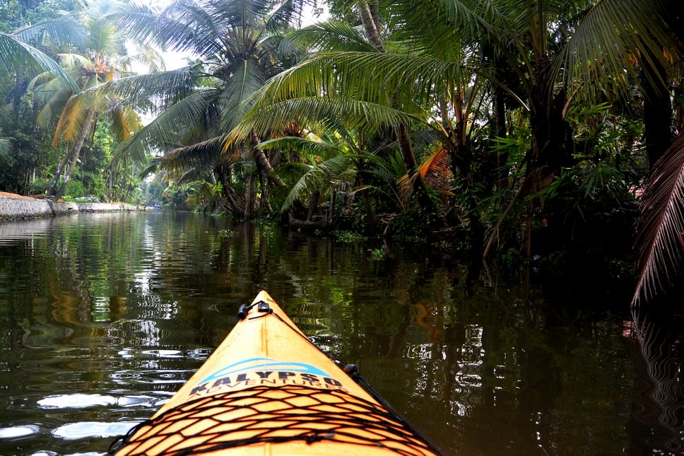 Caiac Kalypso Adventures Backwaters Kerala (16)
