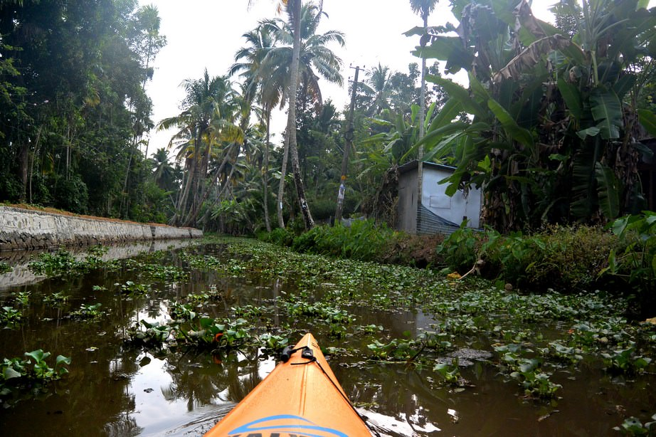 Caiac Kalypso Adventures Backwaters Kerala (27)
