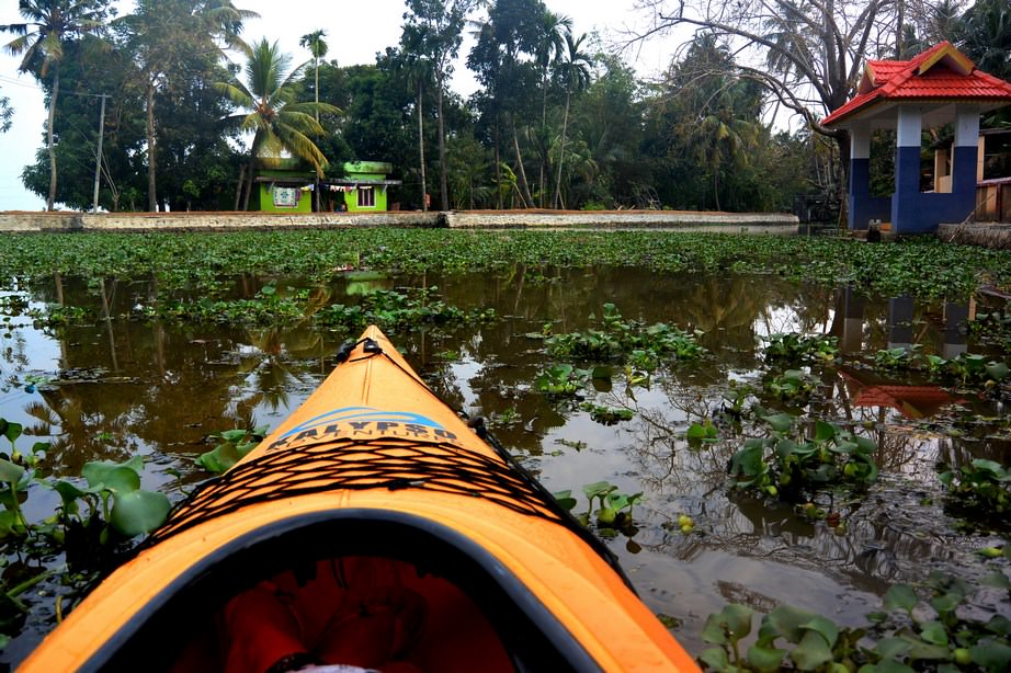 Caiac Kalypso Adventures Backwaters Kerala (28)