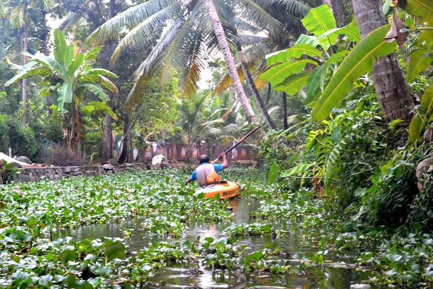 Caiac Kalypso Adventures Backwaters Kerala (38)