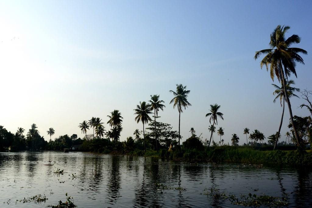 Croaziere Kerala India (21)