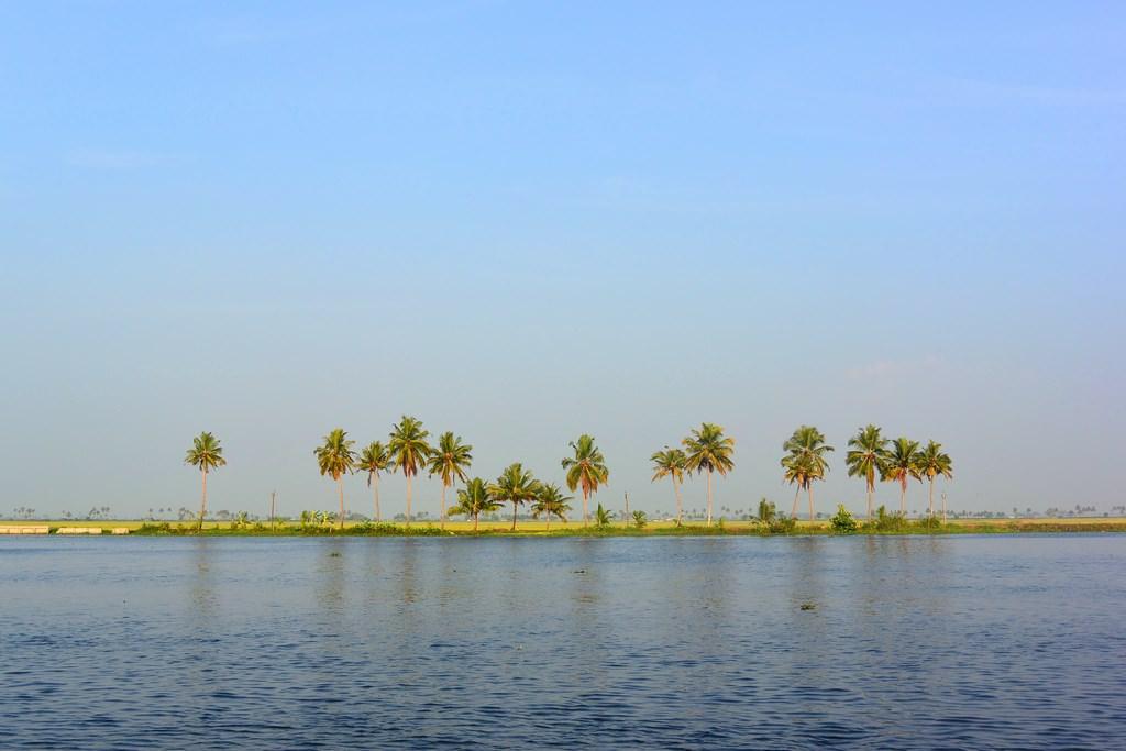 Croaziere Kerala India (22)