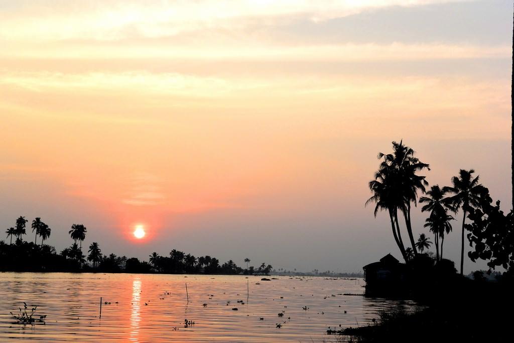 Croaziere Kerala India (23)