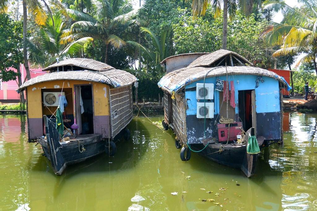 Croaziere Kerala India (50)