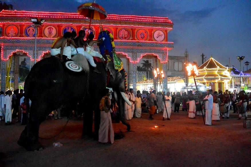 Festival Templu Kerala (1)