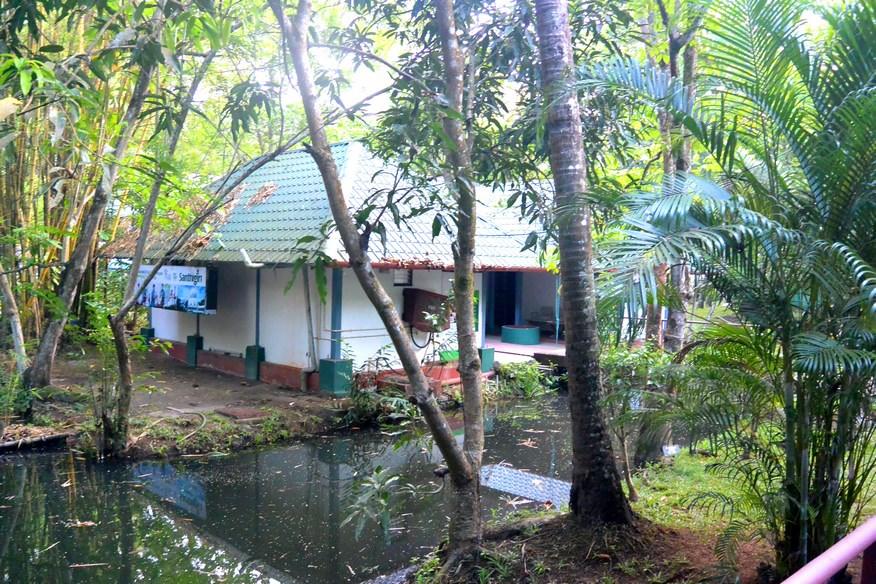 Lakesong Resort Kerala (6)