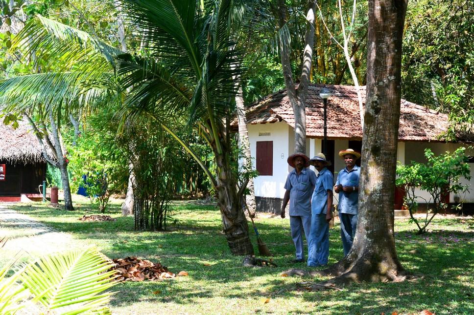 Marari Beach Resort Allapy Kerala (12)