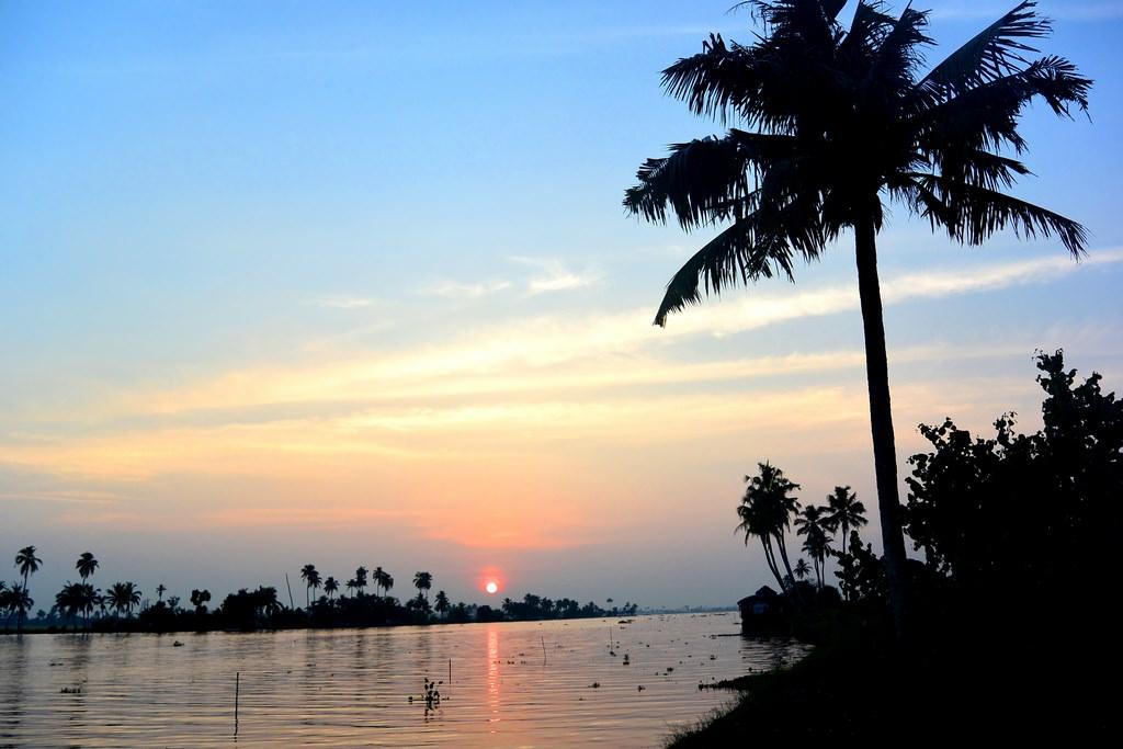 Croaziere Kerala India (24)