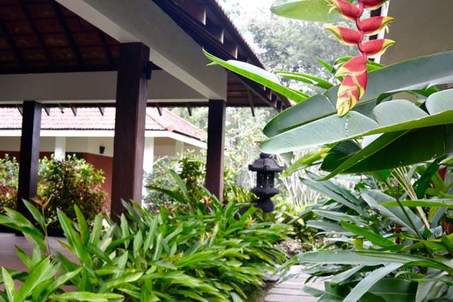 Windflower Resort Vythiri42