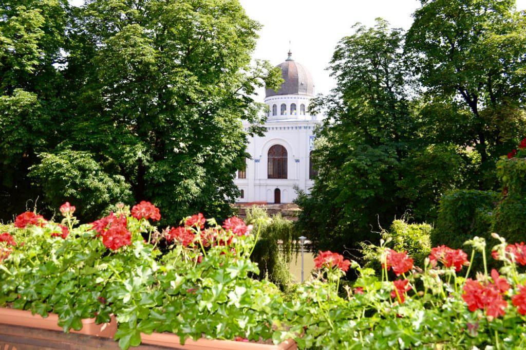 Casa Darvas Oradea Obiective Turistice