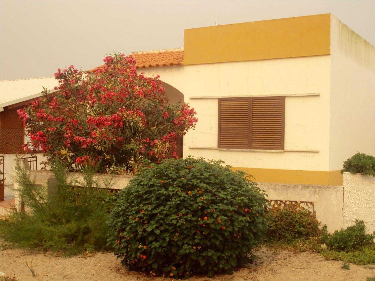 insulele Armona Culatra Farol Algarve 30