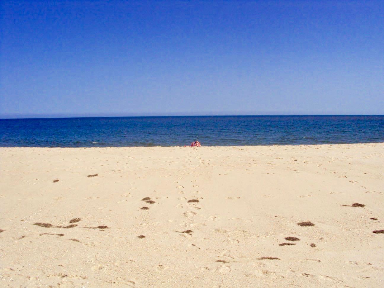 insulele Armona Culatra Farol Algarve plaja 8