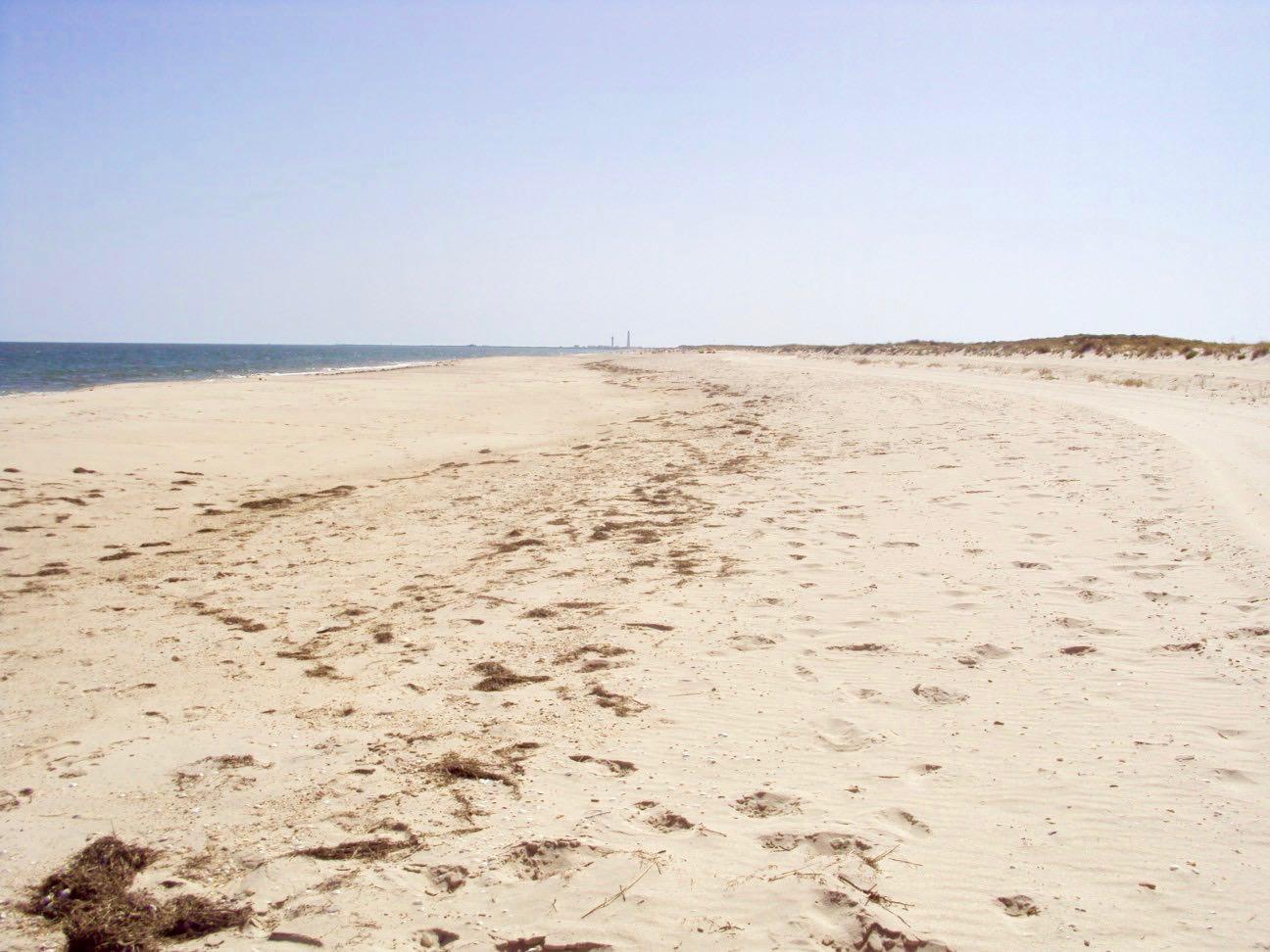 insulele Armona Culatra Farol Algarve plaja 3