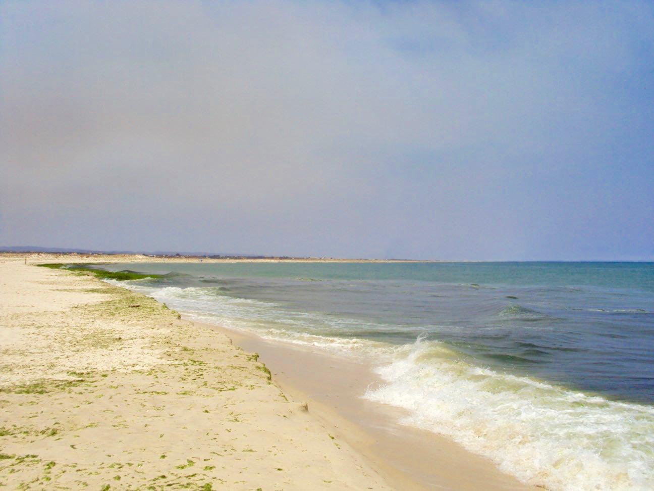 insulele Armona Culatra Farol Algarve 21