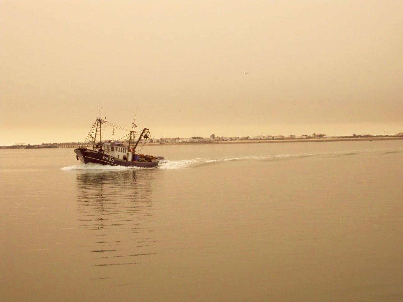 insulele Armona Culatra Farol Algarve 29