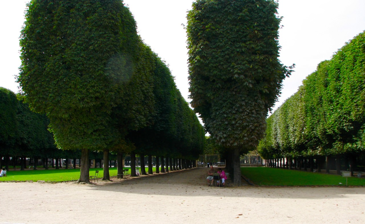 Paris Franta poze9
