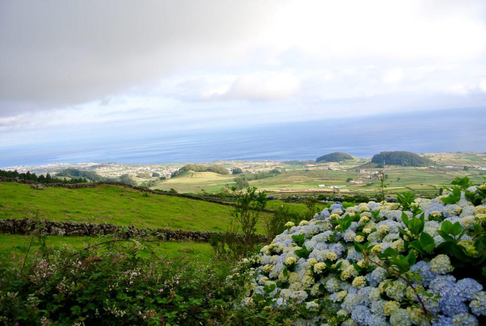 peisaje-natura-insulele-azore-vulcani-lacuri-hortensii34