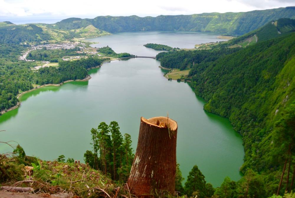 peisaje-natura-insulele-azore-vulcani-lacuri-hortensii5