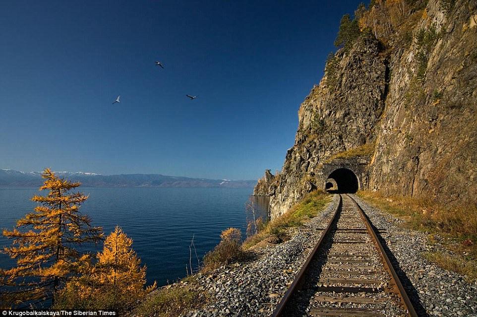 sursa-siberian-times-transsiberian-mare1