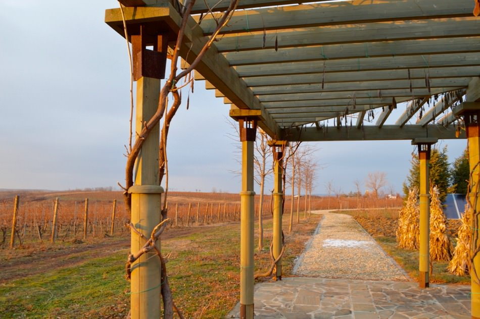 Domeniul Viticol Vila Dobrușa