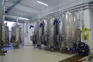 Asa se produce vinul de Dragasani la AVINCIS